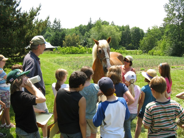 Betsey Wittick of Laughing Crow Farm Works With a Class from Wilkes Elementary