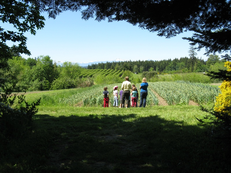 FarmHandsView