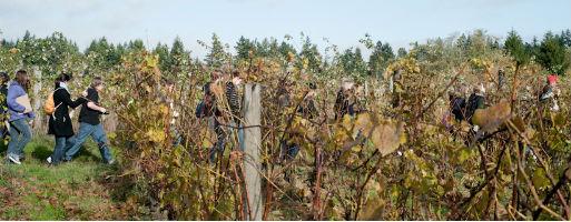 Students tour Suyematsu & Bentryn Family Farms