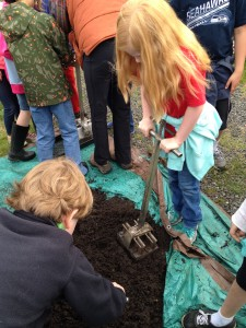 Students learn how to use a tool to make seed blocks that the Heyday farmers use for starting plants.