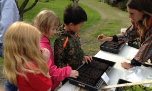 Madi helping Blakely students at Heyday Farm to seed greens that will be starters raised in the greenhouse.