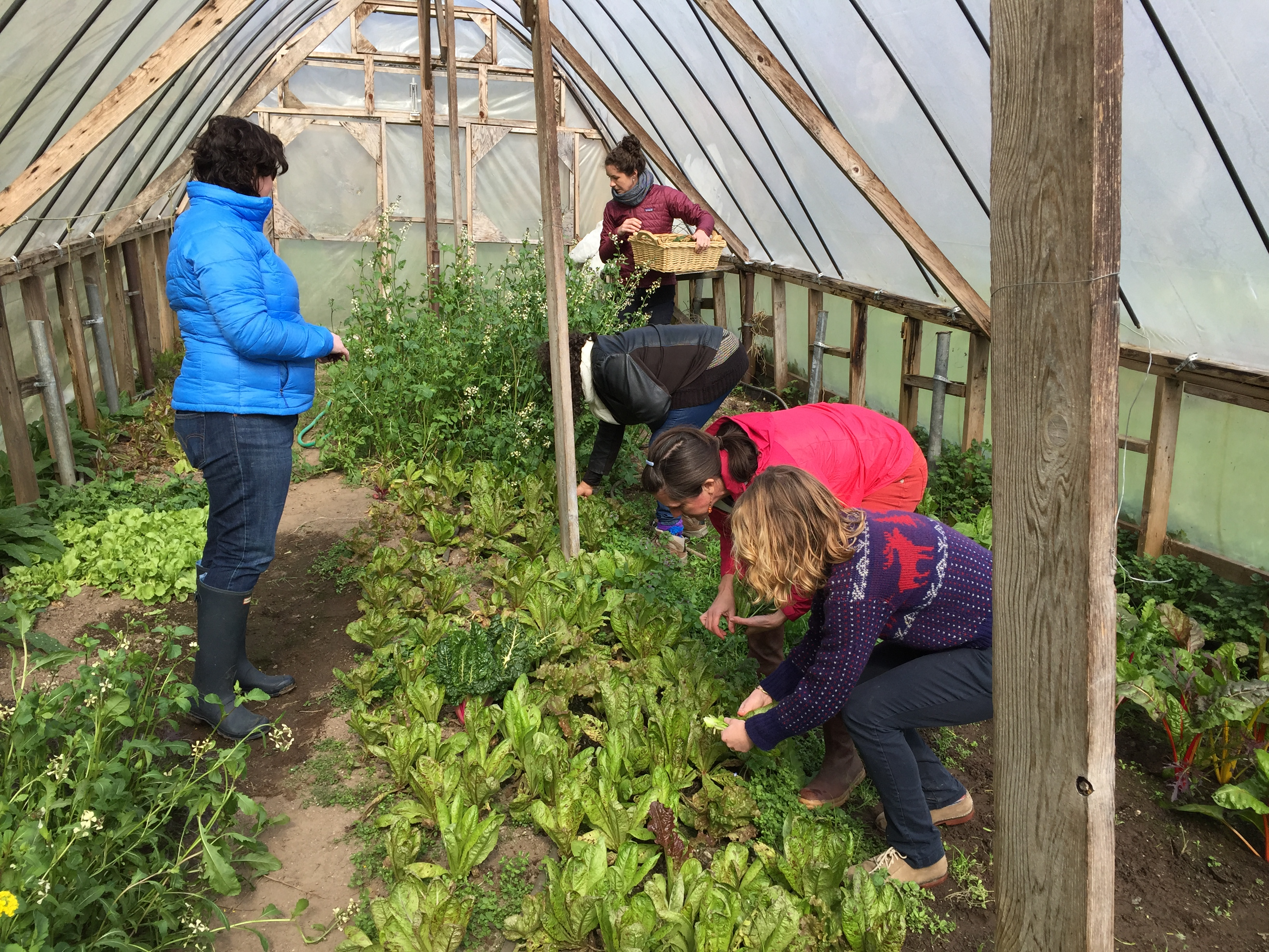 Education Towards Food, Citizenship and Community - EduCultureEduCulture